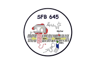 waldemar kolanus molekulare zell amp immunbiologie limes